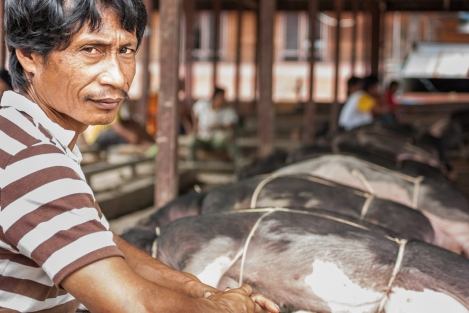 Mercado de Rantepao, Sulawesi, Indonesia