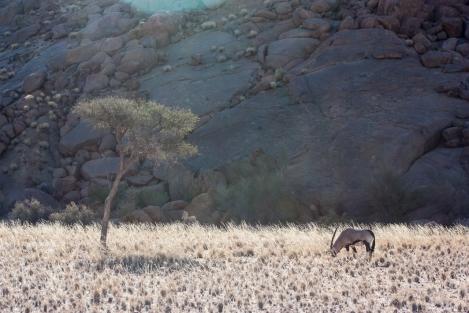 Orice, Namibia