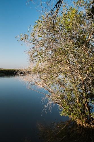 Kavango Panhandle Botswana