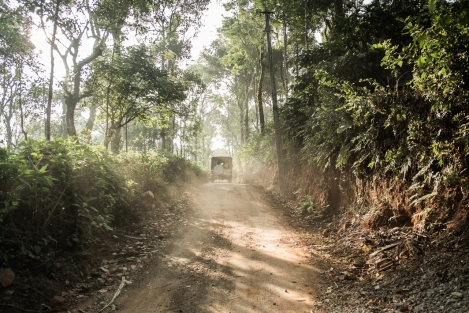 Camino Coorg