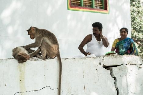 Templo de Lakshmi, Hampi, India