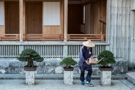 Jardinero japonés