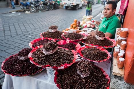 Chapulines, Mercado de Oaxaca