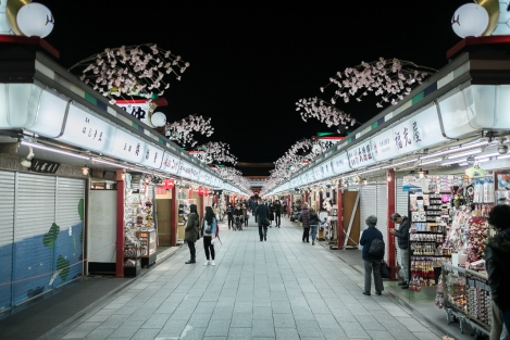 Camino hacia el templo Sensoji en Asakusa, Tokyo