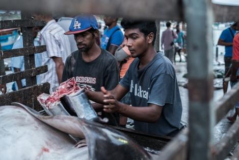 Trabajadores en el mercado de pescado