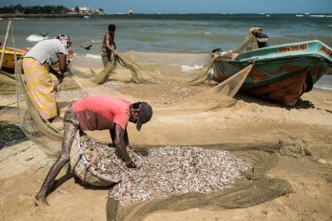 Pescadores en la playa de Negombo