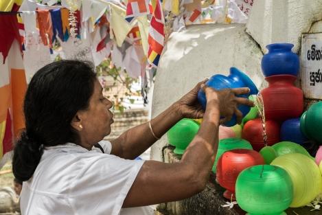 Agua en el árbol Boddhi, Kandy, Sri Lanka