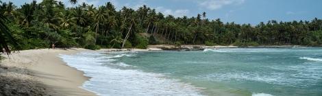 Playa Sri Lanka