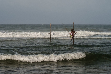 Pescador en un palo, Sri Lanka