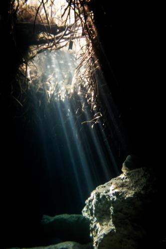 Haz de luz en un cenote