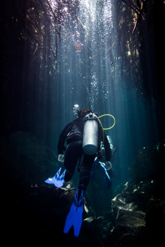 Inmersión en Casa Cenote